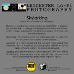 Skylarking blurb